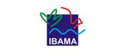 Instituto Brasileiro do Meio Ambiente e dos Recursos Naturais Renováveis